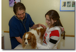 Cat and Dog Wellness Care in Campbell CA